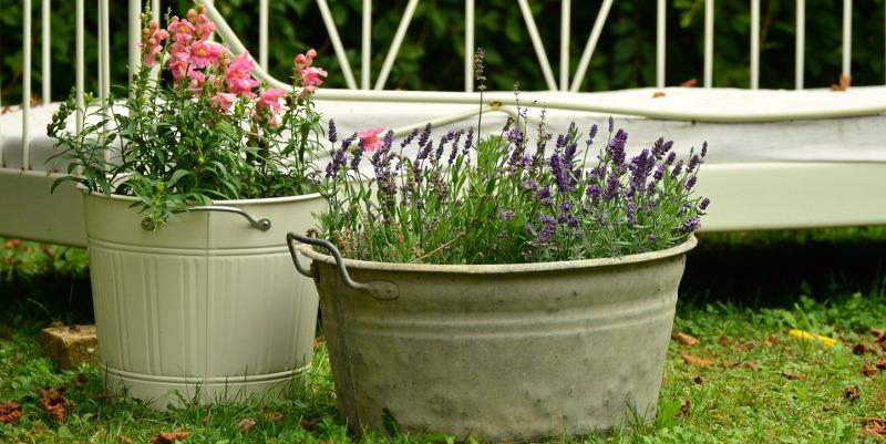 floral-decoration-896205_800